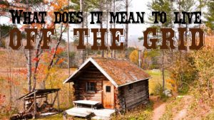 off grid cabin in the woods